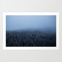 Foggy Lake Louise Trees Art Print