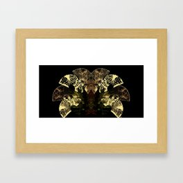 Insecte Eventail  Framed Art Print