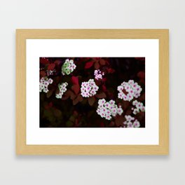 Insect World Framed Art Print