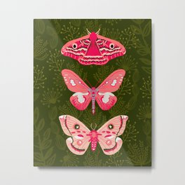 Lepidoptery No. 7 by Andrea Lauren  Metal Print
