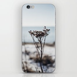 Winter Mood - Travel Nature Photography iPhone Skin