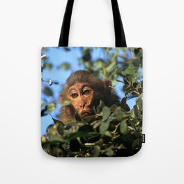 RHESUS MACAQUE MONKEY Tote Bag