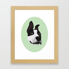 Silly Pitbull Framed Art Print