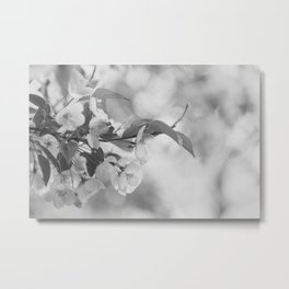 Full Bloom - Black and White Flower Photo Metal Print