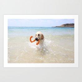 Seadog Nils Art Print