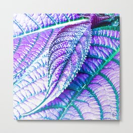 Blue Leaf Metal Print