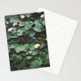 Echo Park Waterlillies Stationery Cards