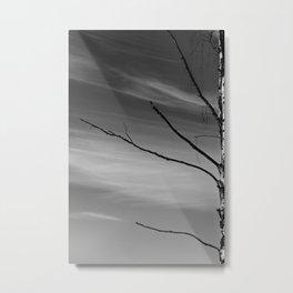 Emenegger Metal Print