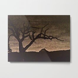 Crooked Limbs Metal Print