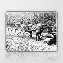 Vintage Adirondacks: The Roadside Watering Trough Laptop & iPad Skin