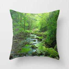 Rocky Forest Creek Throw Pillow