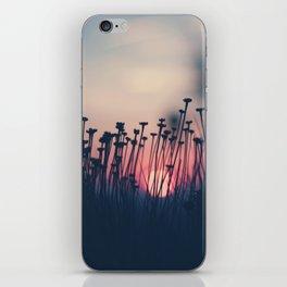 beach sunset iPhone Skin