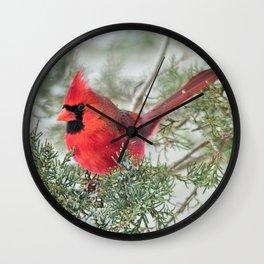 Cocky Cardinal Wall Clock