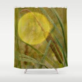 Wellnes-Star Shower Curtain