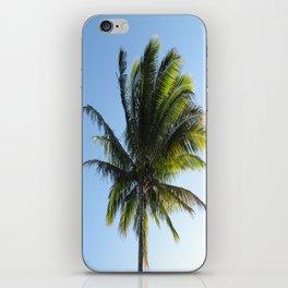 Palm iPhone Skin