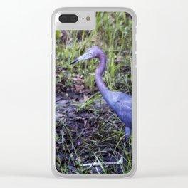 Little Blue Heron Strut Clear iPhone Case