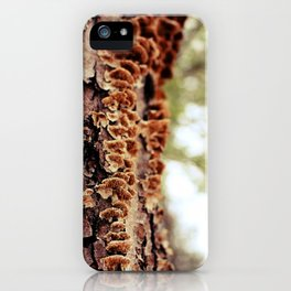 Aspiring Shrooms iPhone Case