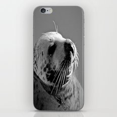 Howth Harbour Seal iPhone & iPod Skin