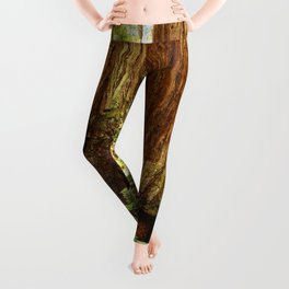 Fern and Sequoia Trunks Leggings
