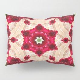 Old Red Rose Kaleidoscope 4 Pillow Sham