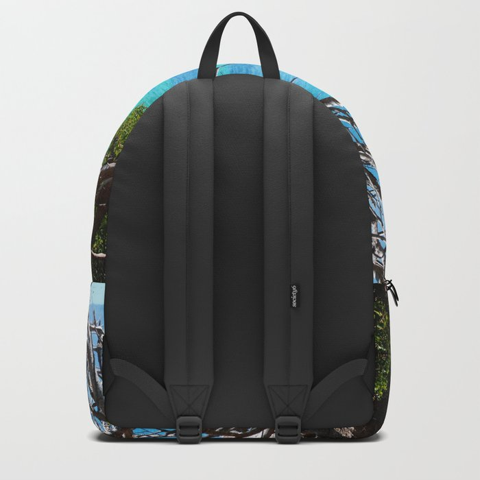 Simons Window Backpack