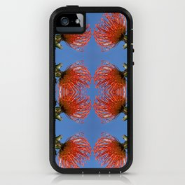 Pincushion Protea Reflections iPhone Case