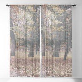 Autumn in Madrid Sheer Curtain