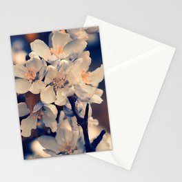 Almond bloom(3) Stationery Cards