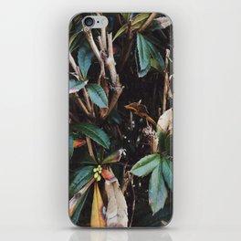 Aesthetic Leaves iPhone Skin