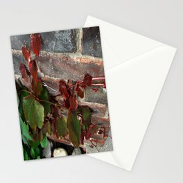 Red Ivy Stationery Cards