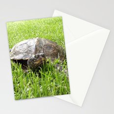 turtle the second Stationery Cards