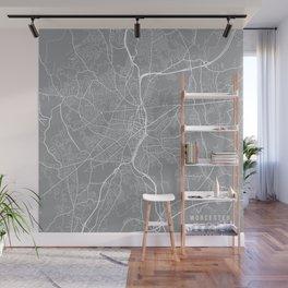 Worcester Map, Massachusetts USA - Pewter Wall Mural