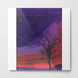 A Winter's Night Metal Print