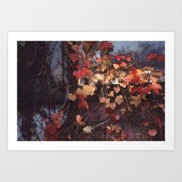 Autumn Leaves with Sun Art Print