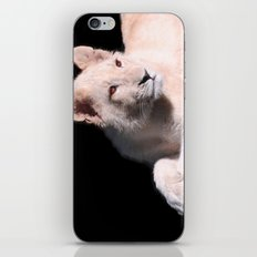 Paws iPhone & iPod Skin