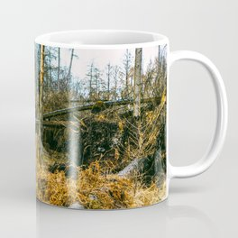 Fallen And Broken Trees After Storm Victoria February 2020 Möhne Forest 4 Coffee Mug