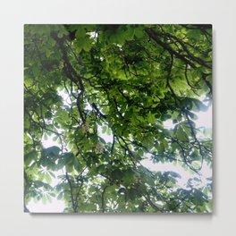 Greenery and leaf VIII Metal Print