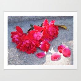 Lost a Step - Roses and Granite Art Print