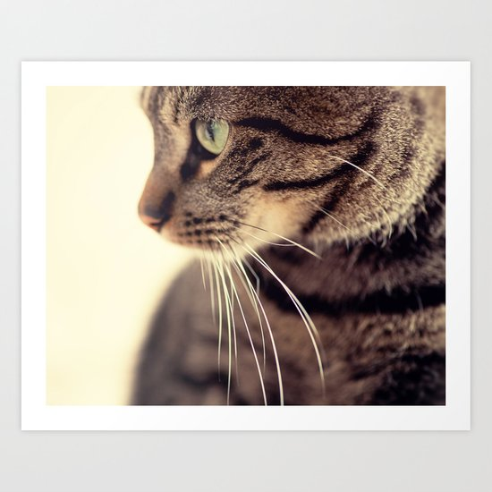 Kitty Love 2 Art Print