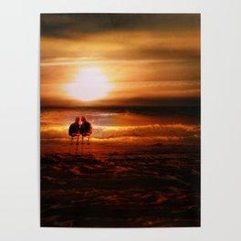 Seagulls - Lovebirds at Sunset Poster