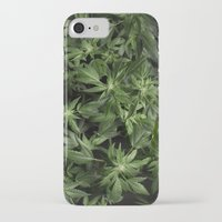 weed iPhone & iPod Cases featuring Weed by Vyacheslav Sizov