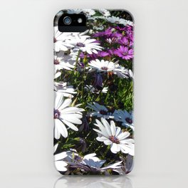 Daisy Weather iPhone Case
