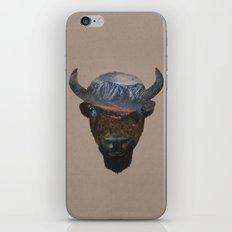 Bison Peak iPhone & iPod Skin