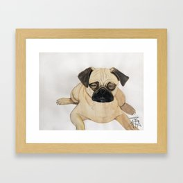 What The Pug?! Framed Art Print