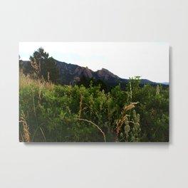 Boulder Mountain Park Metal Print