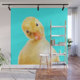 Duckling Portrait Turquoise Background Wall Mural