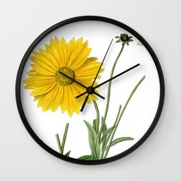 Spear-Leaved Coreopsis / Curtis 1857 Wall Clock