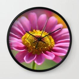 Pink summer flower 012 Wall Clock