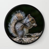 squirrel Wall Clocks featuring Squirrel by Fine Art by Rina