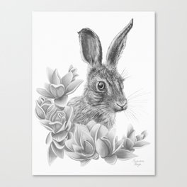 Rabbit Canvas Print